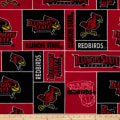 Illinois State Fleece
