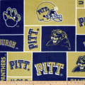 Collegiate Fleece University of Pittsburgh Navy