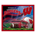 "Collegiate Fleece University of Wisconsin 48"" Panel"