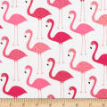Urban Zoologie Flamingos