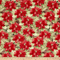 Woodland Holiday Packed Pointsettias Red