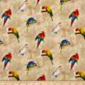 Rainforest Parrots Tan