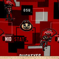Colleigate Fleece Ohio State University Blocks Red/Black