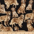 Timeless Treasures Golden Retrievers Golden