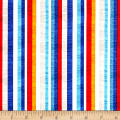 Fun In The Sun Stripe Multi