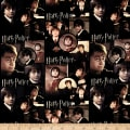 Harry Potter Harry Multi