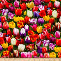 Tulips Digital Print Garden Multi