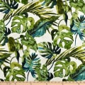 Tommy Bahama Home Falling Fronds Basketweave Aloe