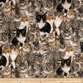 Cats The Way I Like It by Skipping Stones Studio Y2318 Multi Color