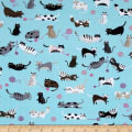 Kaufman Whiskers & Tails Digital Print Natural Panel, Beer, Animal, Cats Blue