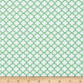 QT Fabrics Sorbet Essentials Geo Green