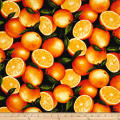 Timeless Treasures Farm Stand Oranges Orange