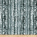 Landscapes Birch Trees Multi
