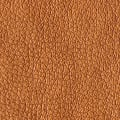 Abbey Shea Perkins Faux Leather Copper