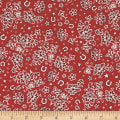 Rodeo Round Up Bandana Print Red