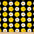 Kanvas Oops A Daisy Window Daisy Black