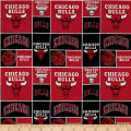 NBA Chicago Bulls Multi