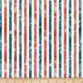 Wilmington Land of Liberty Stripes Multi