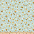 Wilmington Friendly Gathering Stars Teal