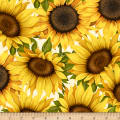 Wilmington Sunset Blooms Large Sunflowers Ivory