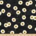 Wilmington Sunset Blooms Daisies Black