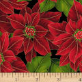 Hoffman Poinsettia Song Large Poinsettias Metallic Black/Gold