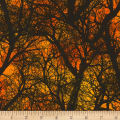Timeless Treasures Wicked Hot Dark Tree Branches Orange