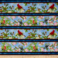 QT Fabrics Songs Of Nature Songbird Decorative Stripe Blue