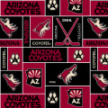 NHL Fleece Arizona Coyotes