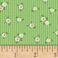 Storybook Ranch Prairie Stripe Green