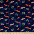 NCAA University of Florida Distress Logo Allover