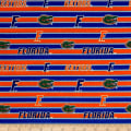 NCAA University of Florida Polo Stripe Allover