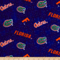NCAA University of Florida Distressed Logo Flannel