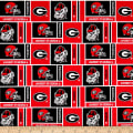 NCAA University of Georgia Herringbone Box