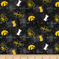 NCAA Iowa Distress Logo Allover Yellow/Grey