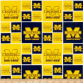 NCAA University Of Michigan Squares Blue