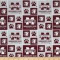 NCAA Mississippi State University Box Logos Allover