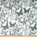 Kelly Ripa Home Social Butterfly Shell