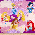 Disney Princess I Am A Princess Clouds Fleece Yellow