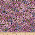 Robert Kaufman Avery Hill Lavender