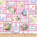 Kitty Glitter Patchwork Digital Pink