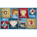 Wilmington 7th Inning Stretch Craft Panel Multi