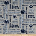NCAA Fleece Penn State Heather Verbiage