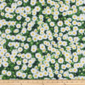 ArtCo Prints Daisy Green