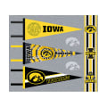 NCAA University of Iowa Pennants (Set of 3 Unique  Poly Felt Designs)