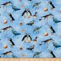 Northcott Atlantic Shore Shore Birds Light Blue