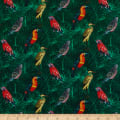 STOF France Borabora Parrot Multicolor