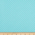 Benartex Home Grown Stripe Aqua