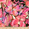 Kaufman Nature Studies Butterflies Pink