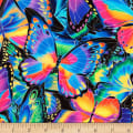 Kaufman Nature Studies Butterflies Multi